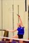 Badminton Vacaville-184.jpg