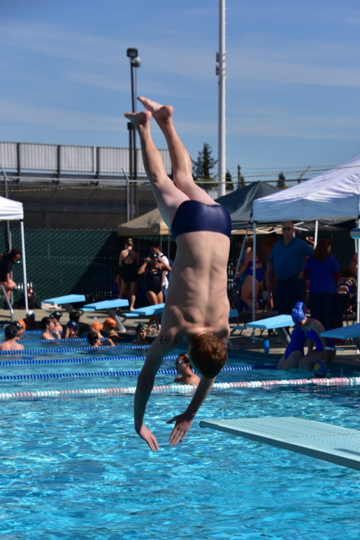 23 march 2016 dive vacaville - Vacaville swimming pool vacaville ca ...