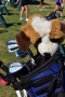Golf_Armijo 023