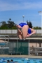 Dive_Swim_Practice 026
