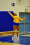 Volleyball_Fairfield 080