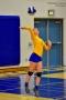 Volleyball_Fairfield 091
