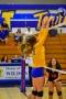 Volleyball_Fairfield 092