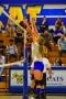 Volleyball_Vanden 123