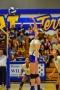 Volleyball_Vanden 135