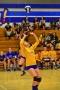 Volleyball_Vanden 238