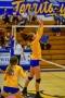 Volleyball_Vanden 310