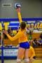 Volleyball_Vanden 338