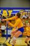 Volleyball_Vanden 346