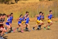 Cross_Country_Vacaville 021